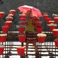 Parapluie imprimé avec un motif de rose rouge