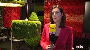 Rosemarie Schulz Salon IMM Cologne 2016